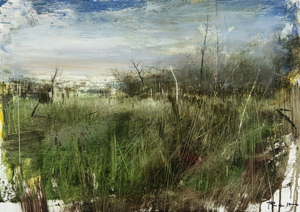 Antonio Pedretti - Paesaggio palustre