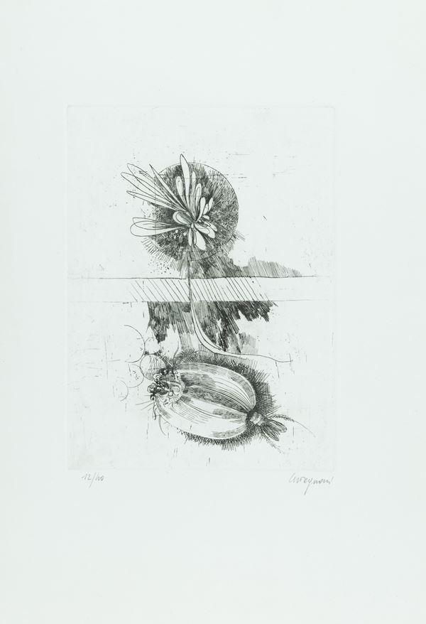 M. Tognoni - Lotto unico di due opere
