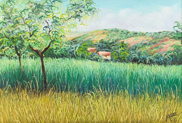 Franco Azzinari - Paesaggio calabrese