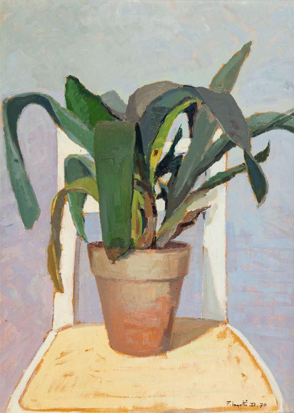 Dino Pelagatti - Vaso con pianta grassa